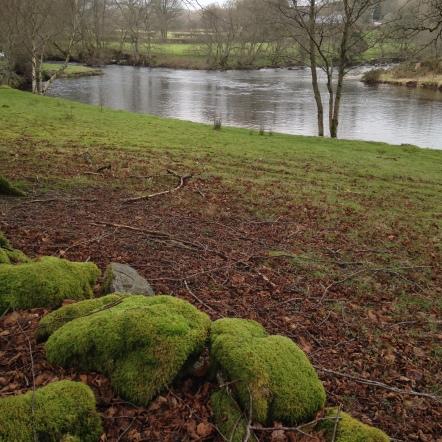 Where the Elan Meets the Wye