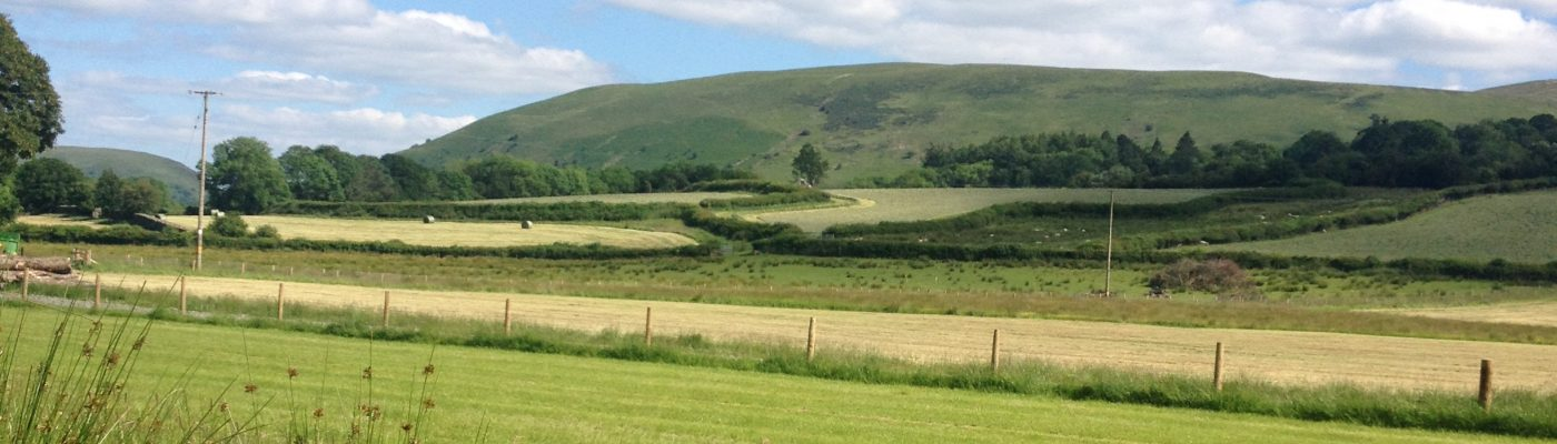 Doliago Farm : Campsite and Holiday Cottage