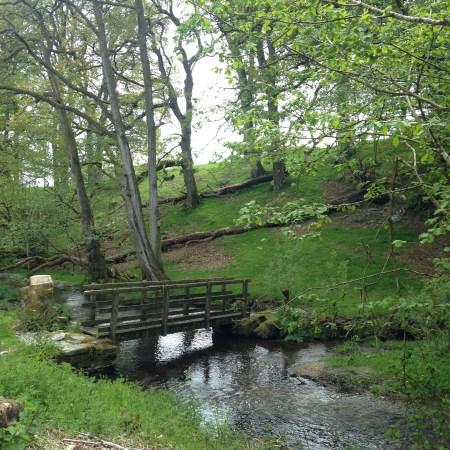 stream-fron-rhayader-spring